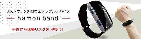 ハモンバンド.jpg