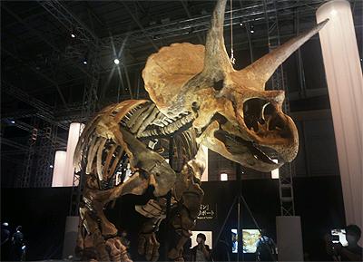 恐竜科学博_04.JPG