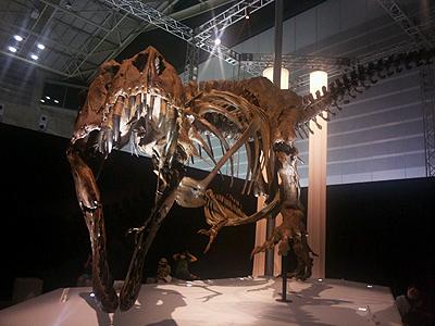 恐竜科学博_05.JPG